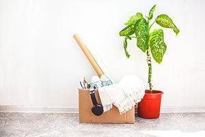 4 Spring Cleaning Tips from the Pros to Prepare for Your Move