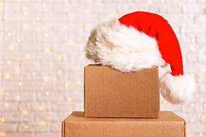 4 Tips for Moving During the Holiday Season